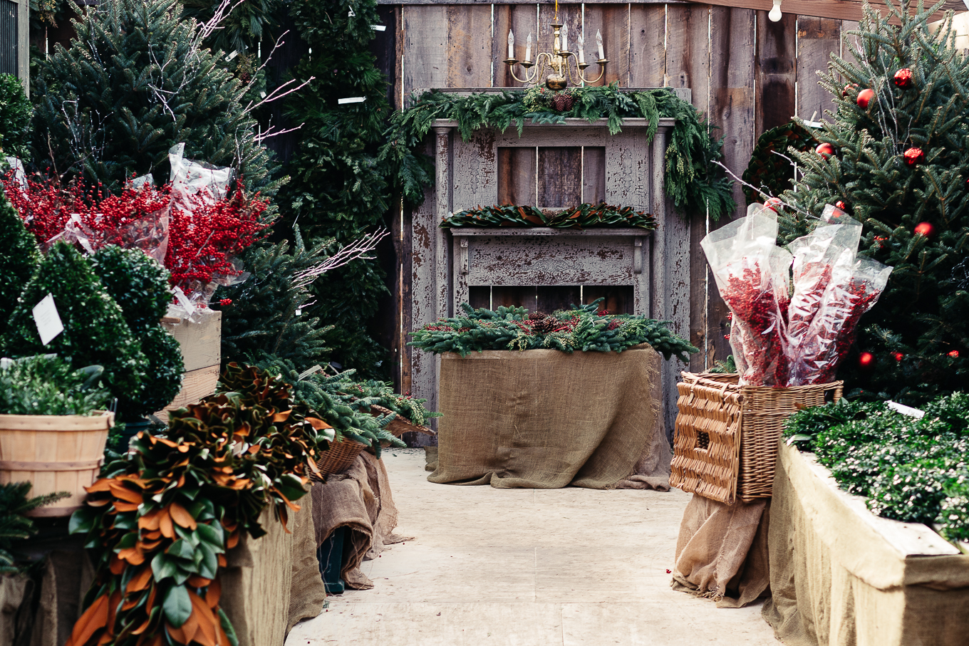 hillenmeyer christmas shop, lexington, kentucky, #sharethelex, christmas traditions in kentucky