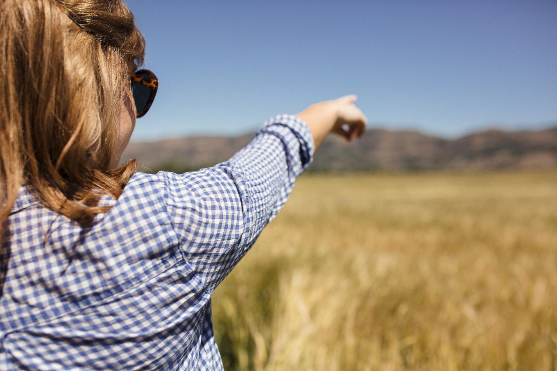 #barleyfieldtrip, lets grab a beer, beer culture, beer blog, anheuser busch blog, the kentucky gent